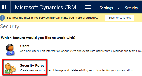 Dynamics Security Role 2